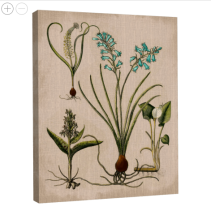Lilies on Linen III Canvas Wall Art